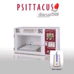 disruptive incubator